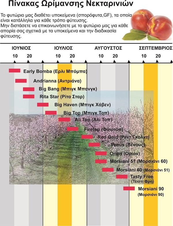 nektarinia-katalogos